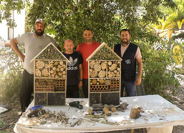 Protecting wild bees and the environment in Spain: an interview with the social project Cal Retor
